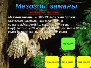 Мезозой заманы – 195-230 млн жыл бұрын басталып, шамамен 163 млн жылға созылд