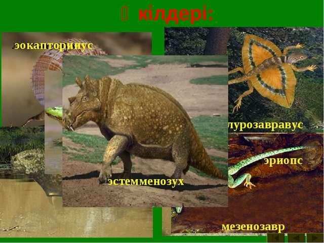 Өкілдері: двиния двинозавр диметродон ивантозавр иностранцевия каккопс лантан...