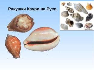 Ракушки Каури на Руси.