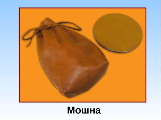 Мошна