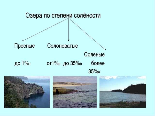 Озера по степени солёности Пресные Солоноватые Соленые до 1%0 от1%0 до 35%0...