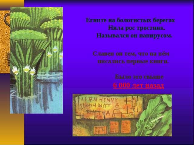 Египте на болотистых берегах Нила рос тростник. Назывался он папирусом. Славе...