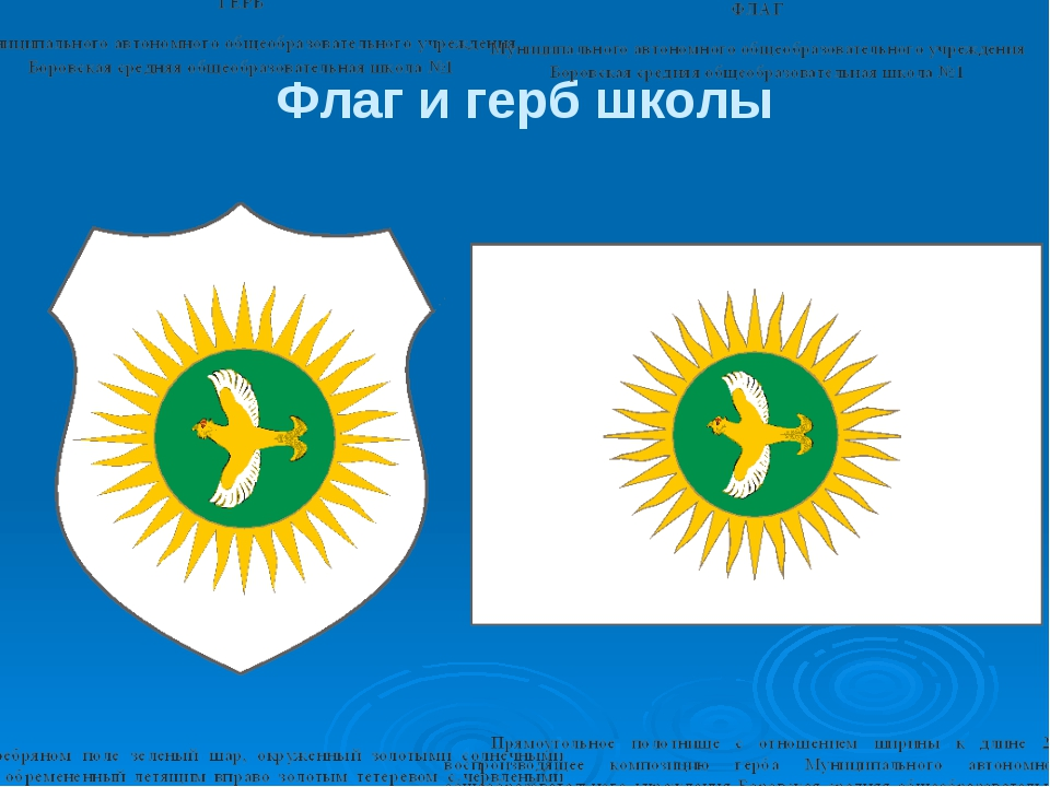 Флаг и герб школы