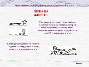 Упражнения для формирования правильной осанки С ПРЕДМЕТОМ НА ГОЛОВЕ Стоя с пр