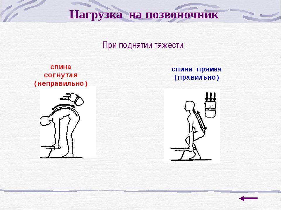 Исследование 2. Изучение состояния здоровья учащихся МОАУ СОШ № 4. По данным...