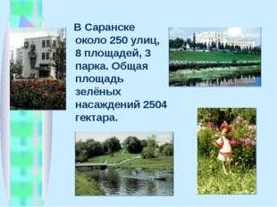 В Саранске около 250 улиц, 8 площадей, 3 парка. Общая площадь зелёных насажд