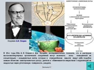 Академик А.И. Опарин В 20-е годы XXв. А. И. Опарин и Дж. Холдейн эксперимента