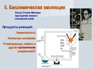 5. Биохимическая эволюция Опыты Стэнли Миллера: зарождение жизни в стеклянной