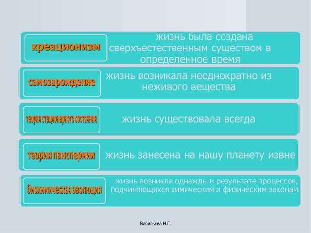 Васильева Н.Г. Васильева Н.Г.