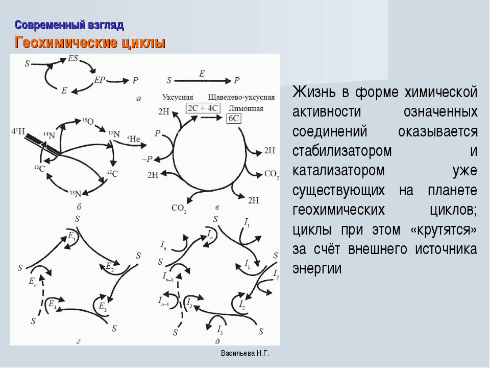 Современный взгляд Геохимические циклы Жизнь в форме химической активности оз...