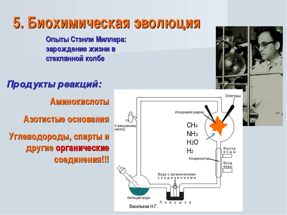 5. Биохимическая эволюция Опыты Стэнли Миллера: зарождение жизни в стеклянной...
