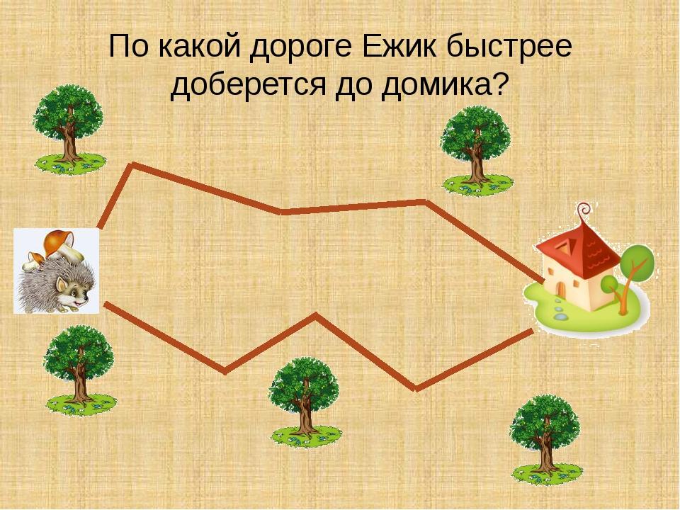По какой дороге Ежик быстрее доберется до домика?