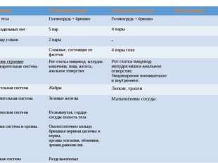Признаки Ракообразные Паукообразные Насекомые Отделы тела Головогрудь + брюшк