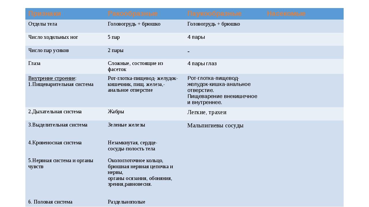 Признаки Ракообразные Паукообразные Насекомые Отделы тела Головогрудь + брюшк...