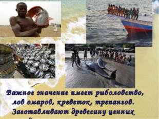 Важное значение имеет рыболовство, лов омаров, креветок, трепангов. Заготавл