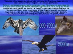 Человек и большинство животных не живут на больших высотах, т.к. все-таки они