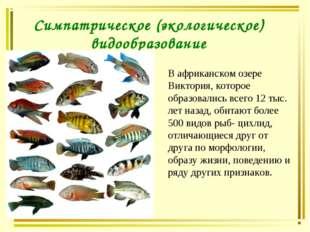 Симпатрическое (экологическое) видообразование В африканском озере Виктория,
