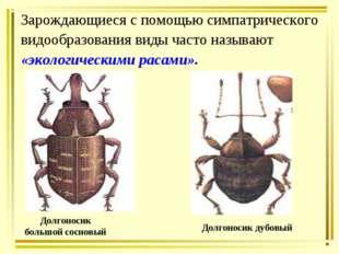 Зарождающиеся с помощью симпатрического видообразования виды часто называют «