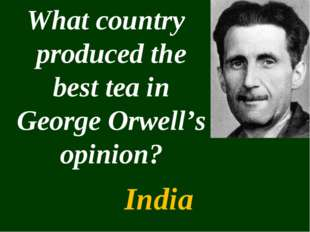 What country produced the best tea in George Orwell's opinion? India