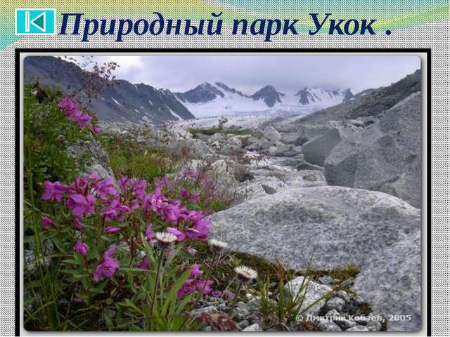 Алта́йский приро́дный запове́дник.