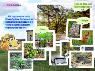Село Богана расположено в северной части округа на левом берегу реки Богана.