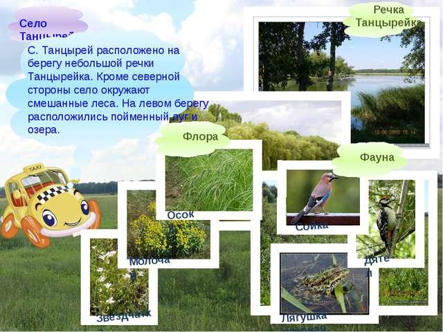 Село Танцырей С. Танцырейрасположено на берегу небольшой речки Танцырейка....