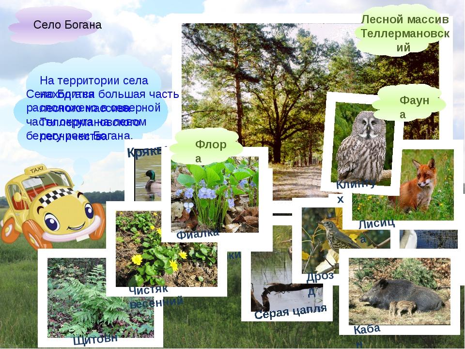 Село Богана расположено в северной части округа на левом берегу реки Богана....