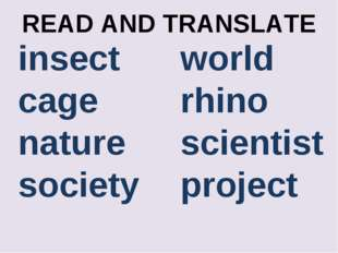 READ AND TRANSLATE insect cage nature society world rhino scientist project