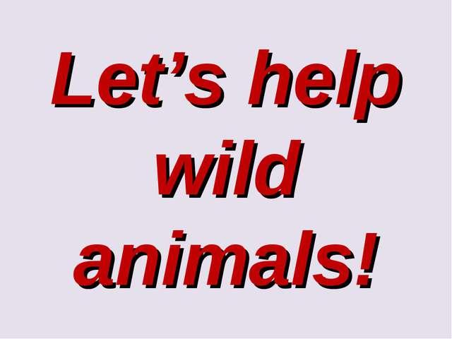 Let's help wild animals!
