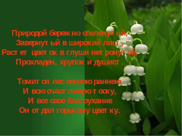 Природой бережно спеленутый, Завернутый в широкий лист, Растет цветок в глуш...