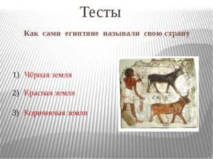 Как сами египтяне называли свою страну Тесты Чёрная земля Красная земля Корич