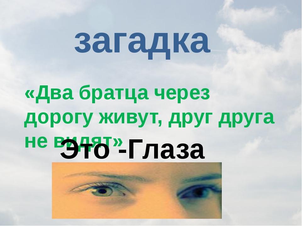 загадка «Два братца через дорогу живут, друг друга не видят» Это -Глаза