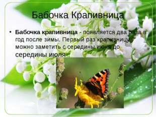 Бабочка Крапивница Бабочка крапивница- появляется два раза в год после зимы.