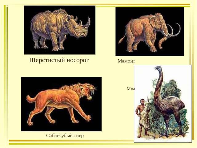 Шерстистый носорог Мамонт Саблезубый тигр Моа