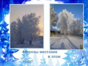 Морозы жестокие в этом году!