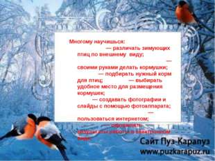 Многому научишься: — различать зимующих птиц по внешнему виду; — своими рукам