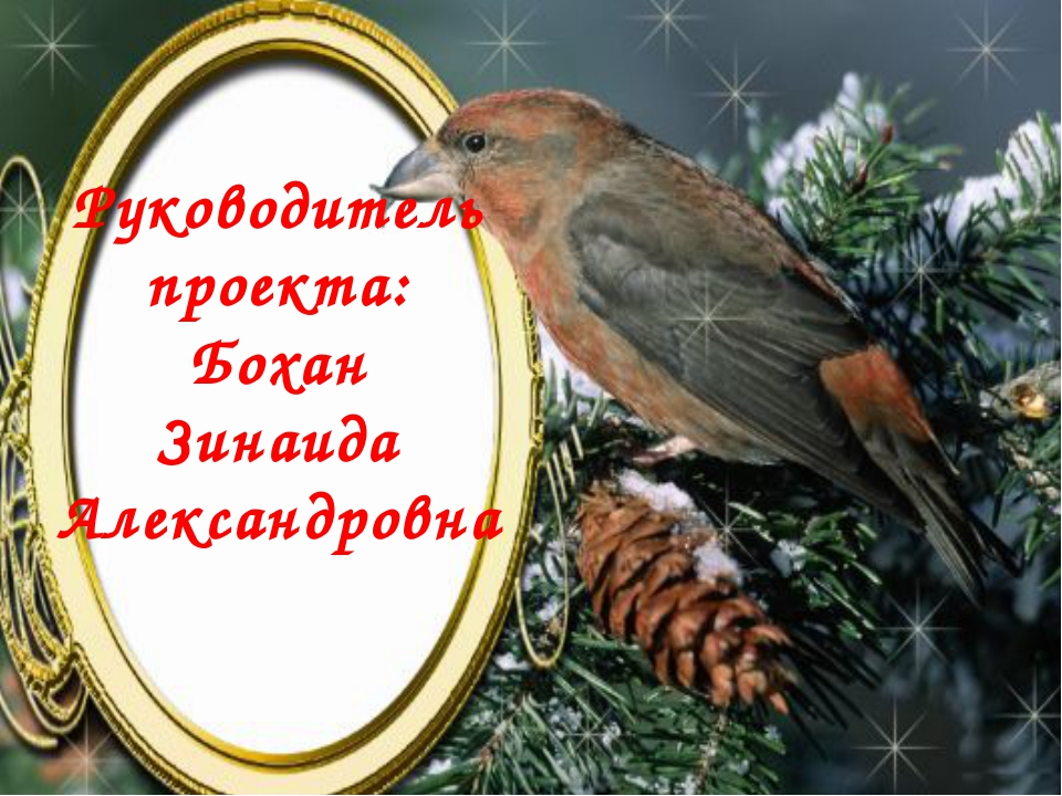 Руководитель проекта: Бохан Зинаида Александровна