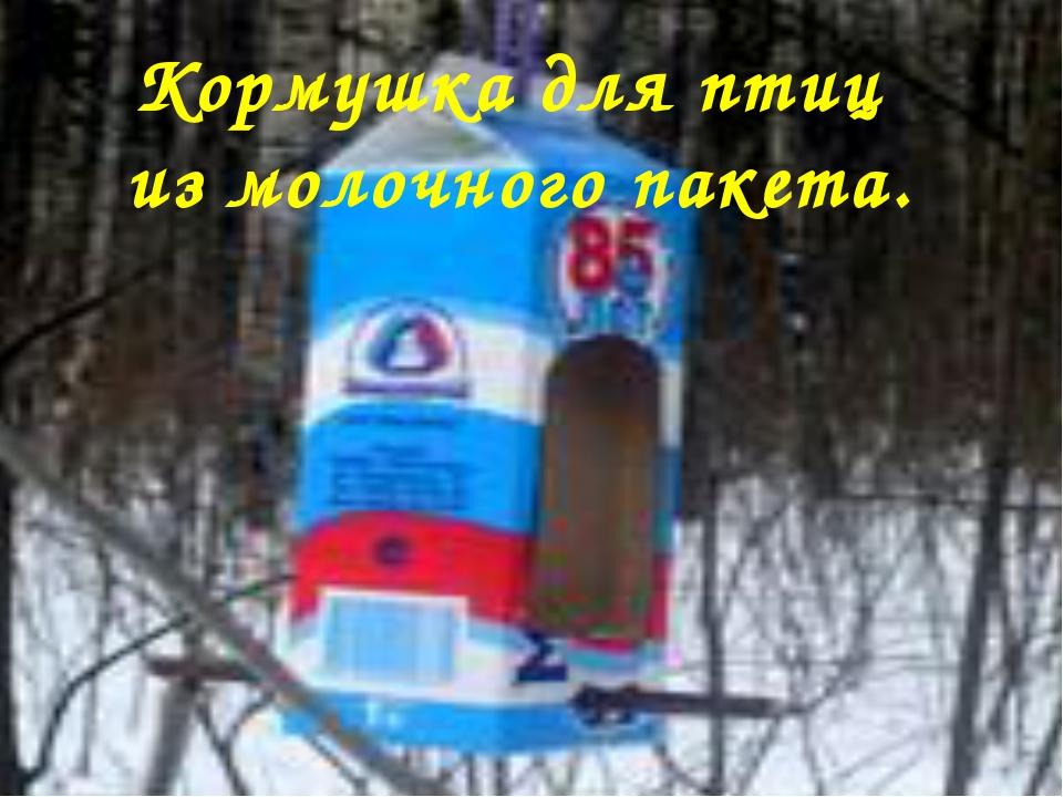 Кормушка для птиц из молочного пакета.