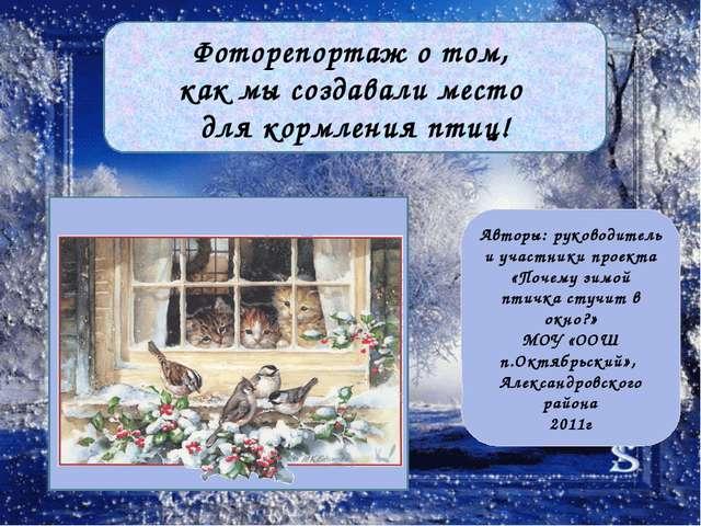 Авторы: руководитель и участники проекта «Почему зимой птичка стучит в окно?...