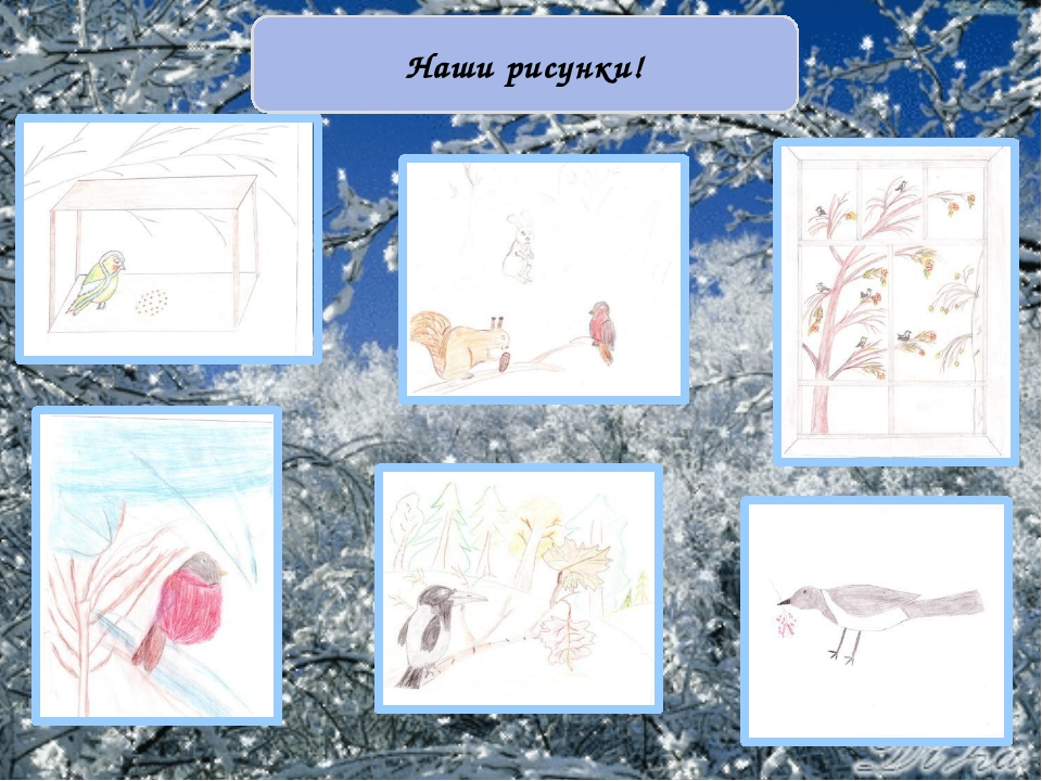 Наши рисунки!