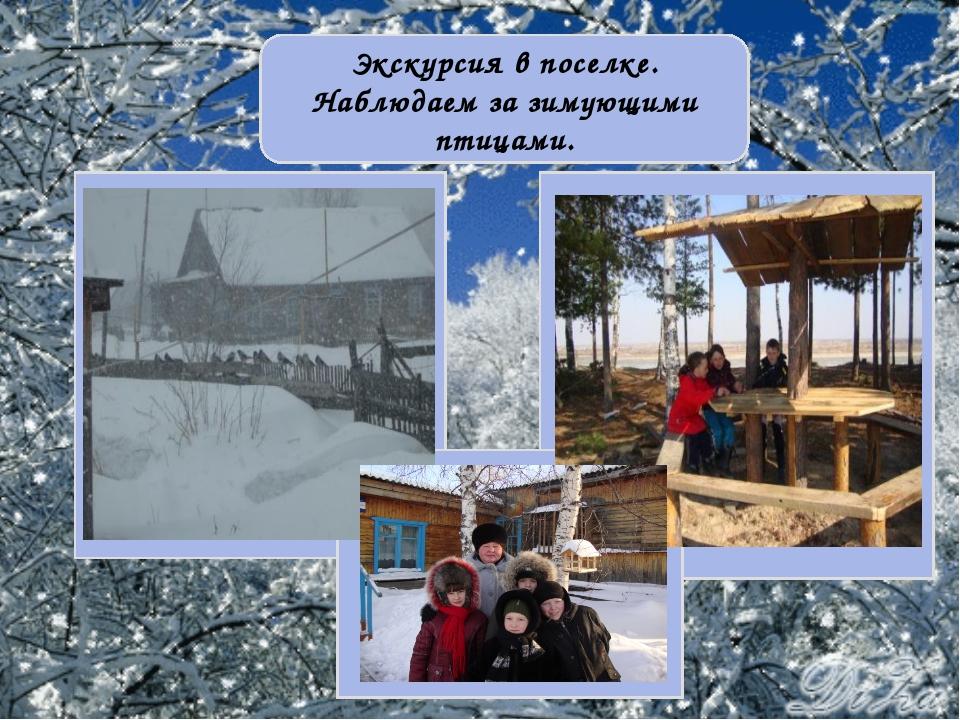 Экскурсия в поселке. Наблюдаем за зимующими птицами.