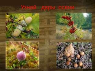 Узнай дары осени