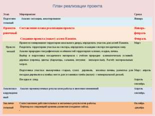 План реализации проекта Этап Мероприятие Сроки Подготови-тельный Анализ ситуа