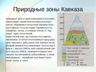 Природные зоны Кавказа Природные зоны в горах размещаются поэтажно. Кавказ им