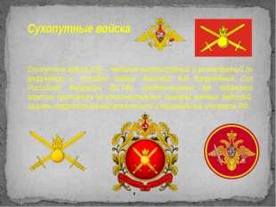 Сухопутные войска Сухопутные войска (СВ)– наиболее многочисленный и разнообр