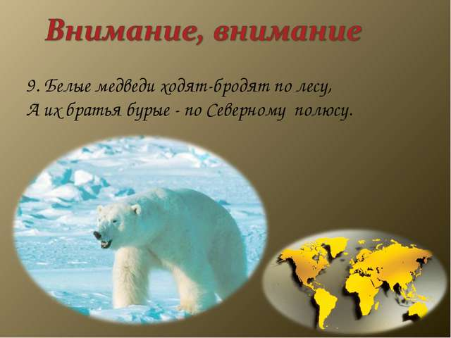 9. Белые медведи ходят-бродят по лесу, А их братья бурые - по Северному...
