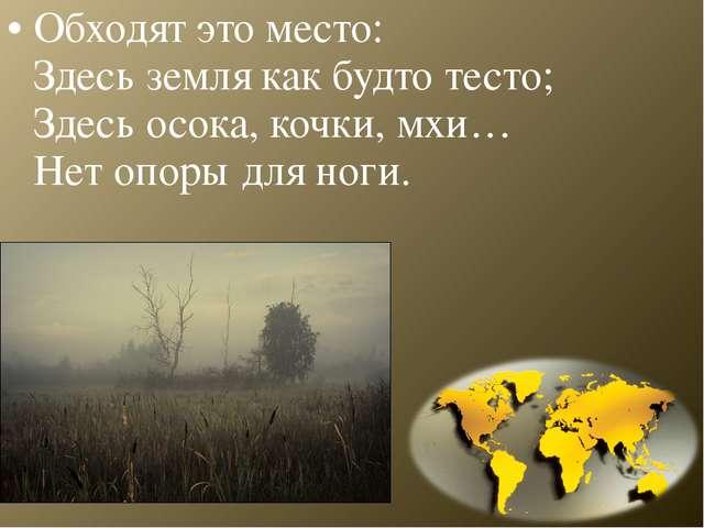 Обходят это место: Здесь земля как будто тесто; Здесь осока, кочки, мхи… Нет...