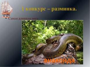 1 конкурс – разминка. Самая длинная змея анаконда