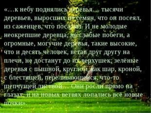 «…к небу поднялись деревья… тысячи деревьев, выросших из семян, что он посеял