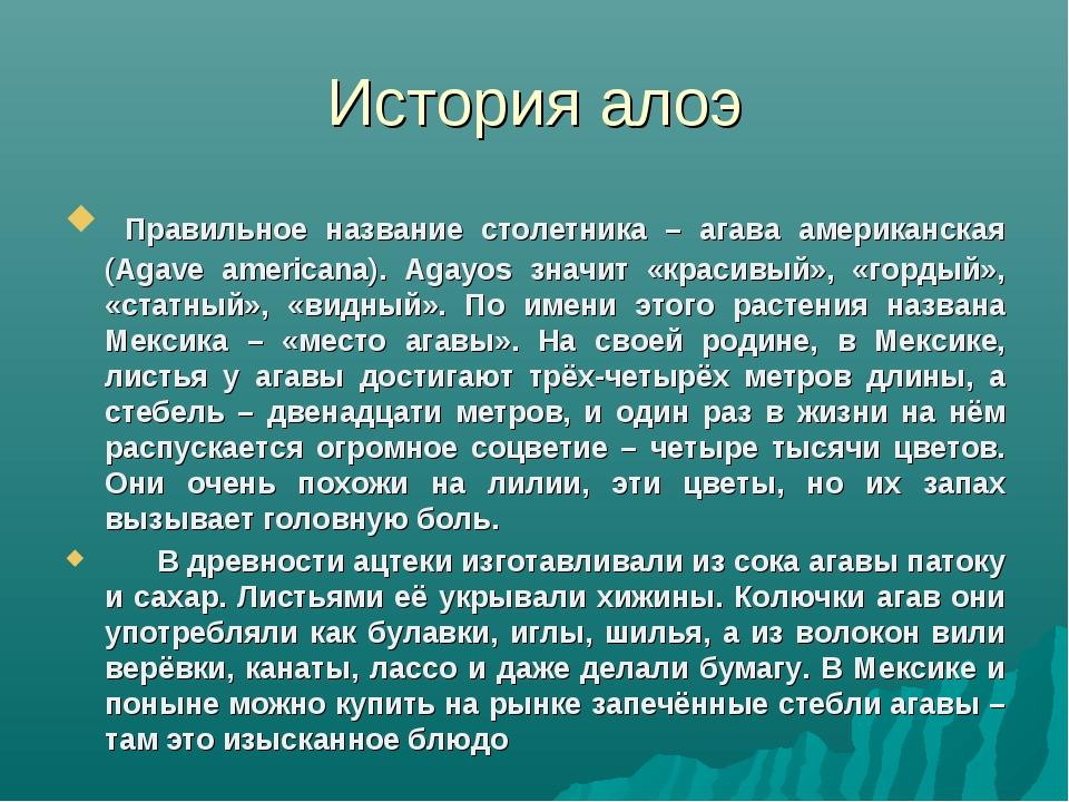 История алоэ Правильное название столетника – агава американская (Agave ameri...